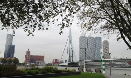 Rotterdam, cosa vedere in un giorno nella città di Erasmo