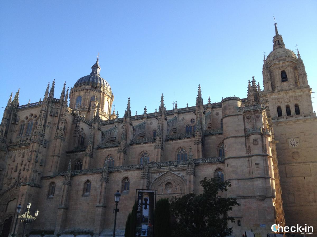 Un weekend a Salamanca: il complesso delle Cattedrali