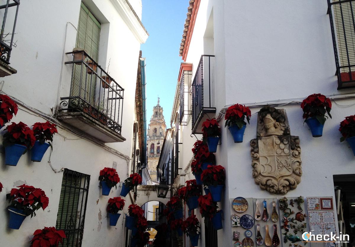 Calle de las flores a Cordoba, Spagna