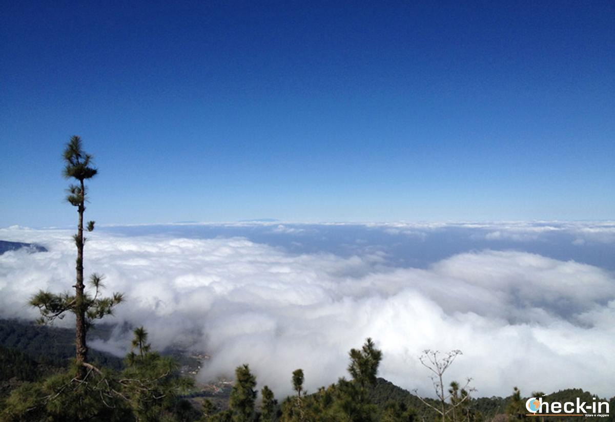 Il mar de Nubles visto dal Teide