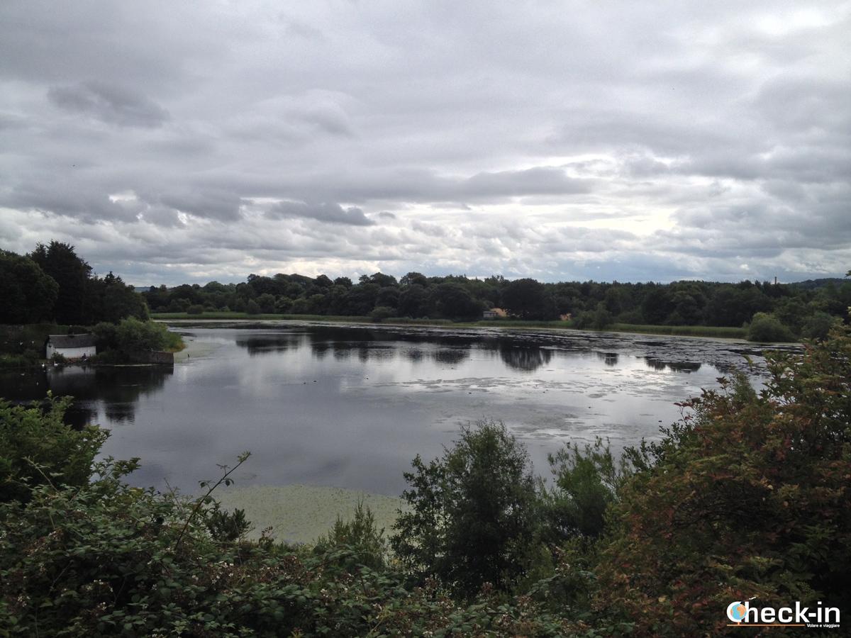 Scampagnata a Edimburgo: Duddingston Loch