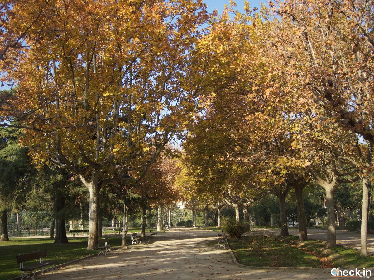 Viale autunnale nel Parque Grande di Zaragoza