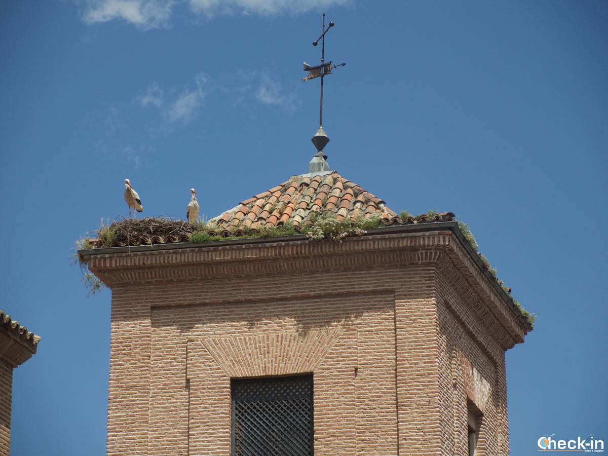 Le cicogne di Alcalá de Henares