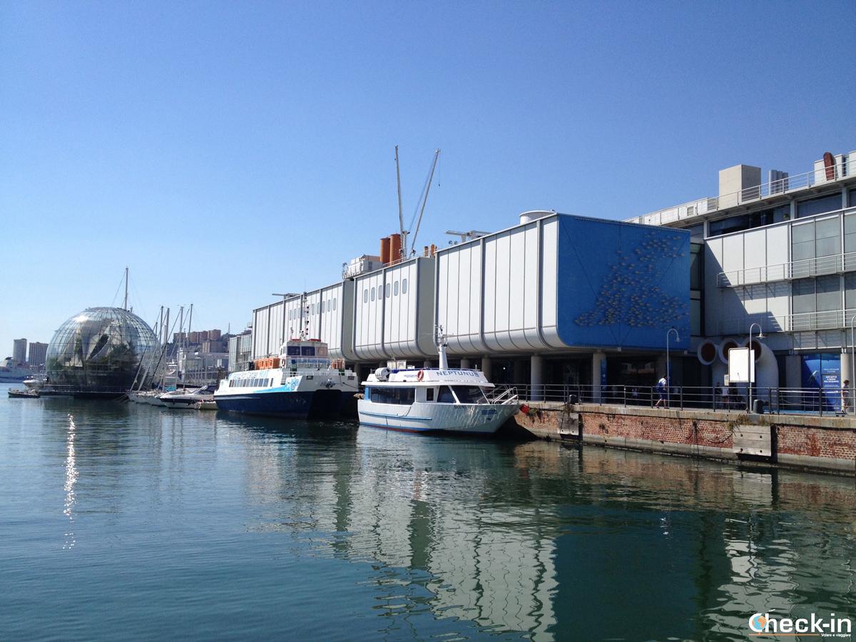 Cosa vedere nel centro storico di Genova: l'Acquario e la Biosfera