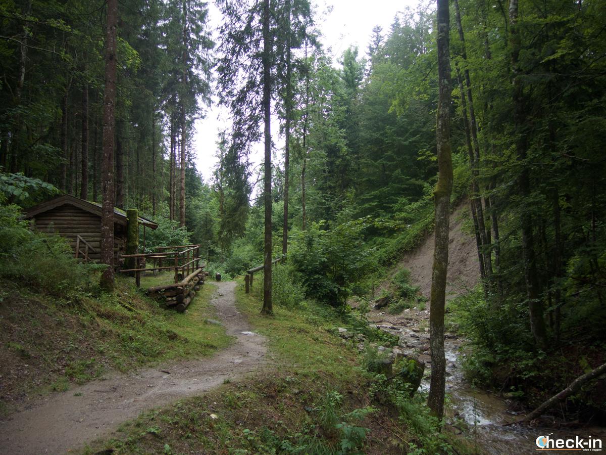 Sentiero verso Hintersteiner See a Scheffau am Wilder Kaiser