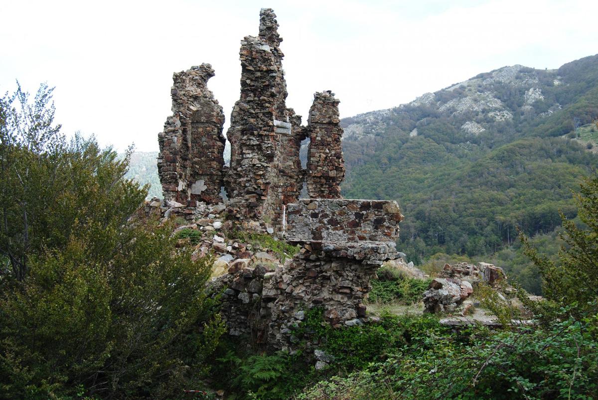 Vacanza in Corsica: Vizzavona