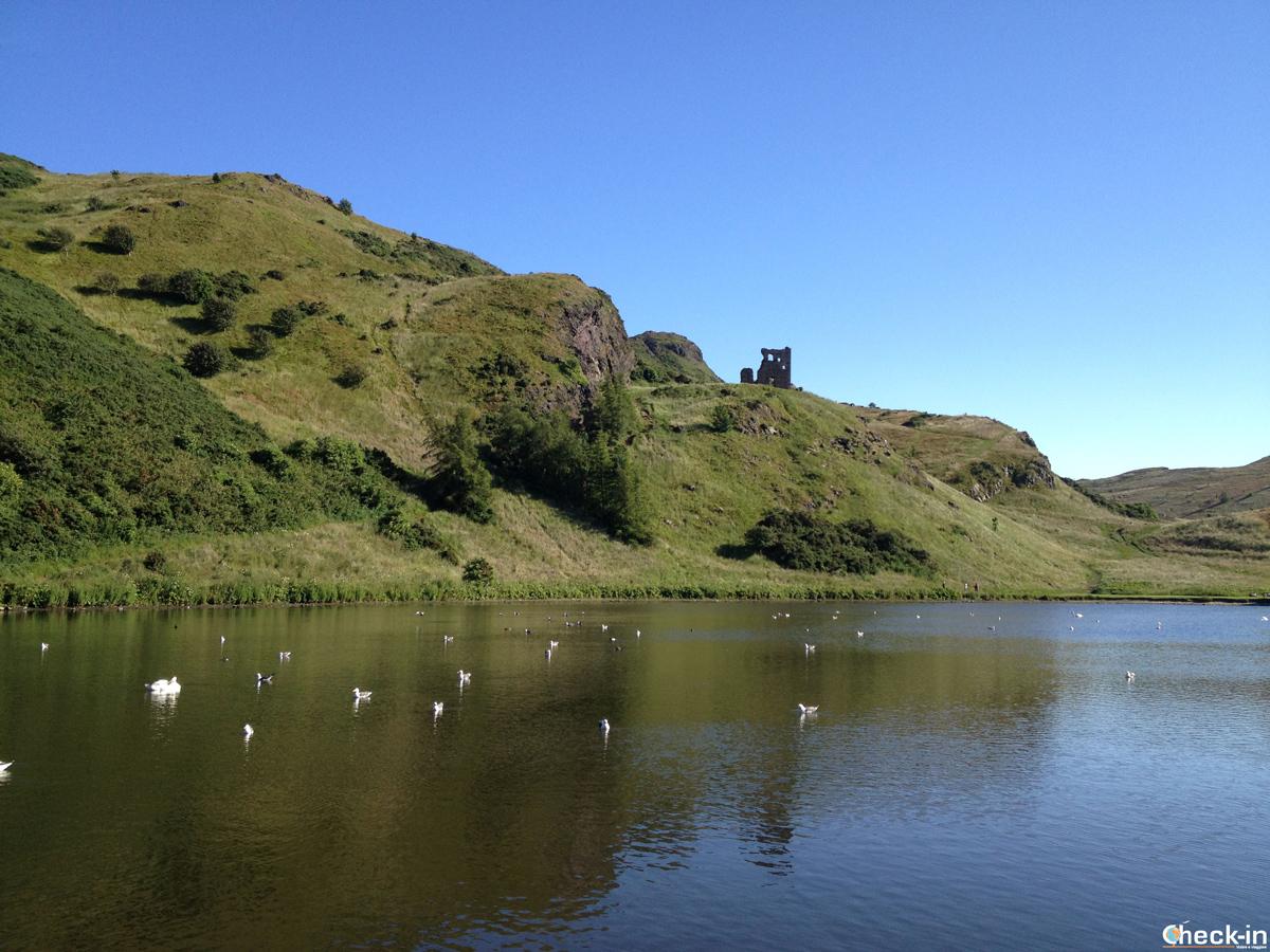 Edimburgo a agosto, relax a Holyrood Park