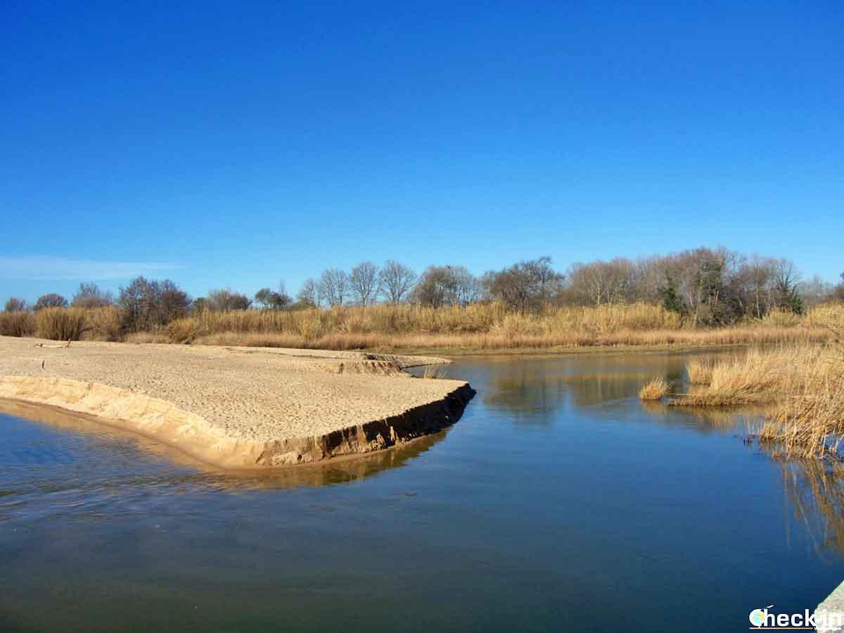 Il delta del fiume Tordera a Blanes, Costa Brava