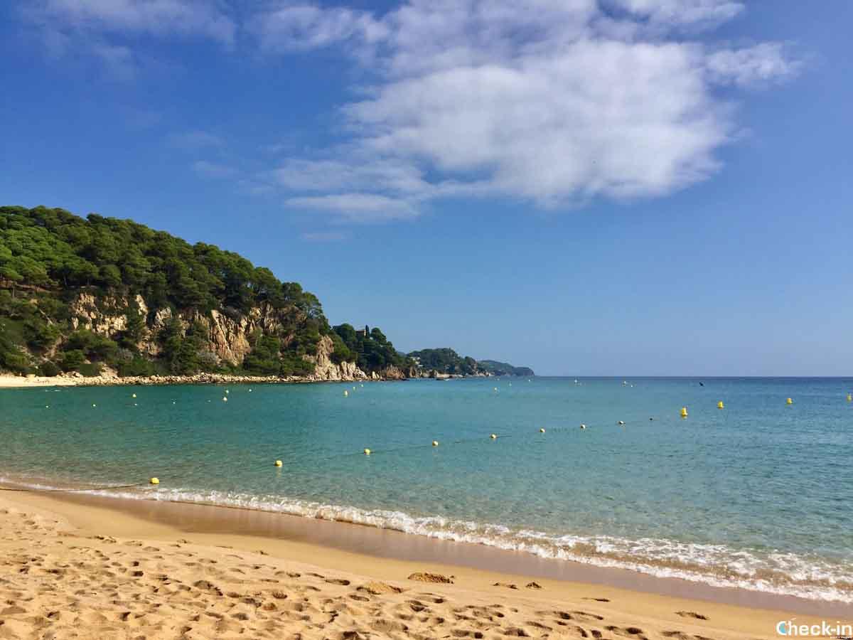 Spiagge tranquille vicino a Lloret de Mar - Santa Cristina
