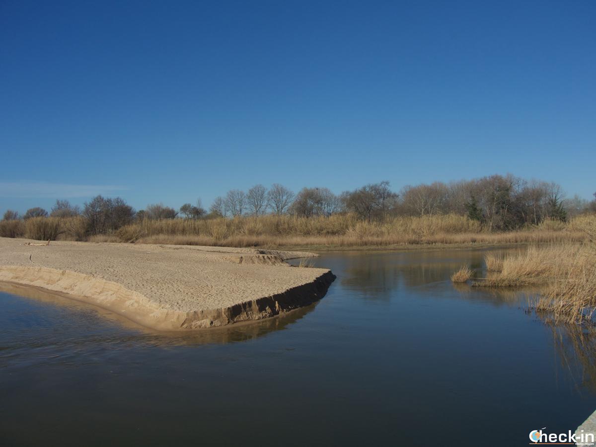 Desembocadura del río Tordera a Blanes, Costa Brava