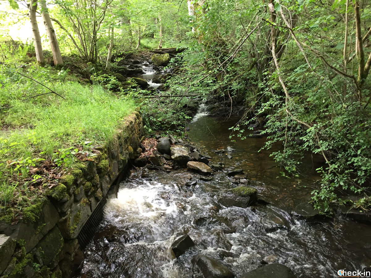 Scorci della Pitlochry Black Spout Walk