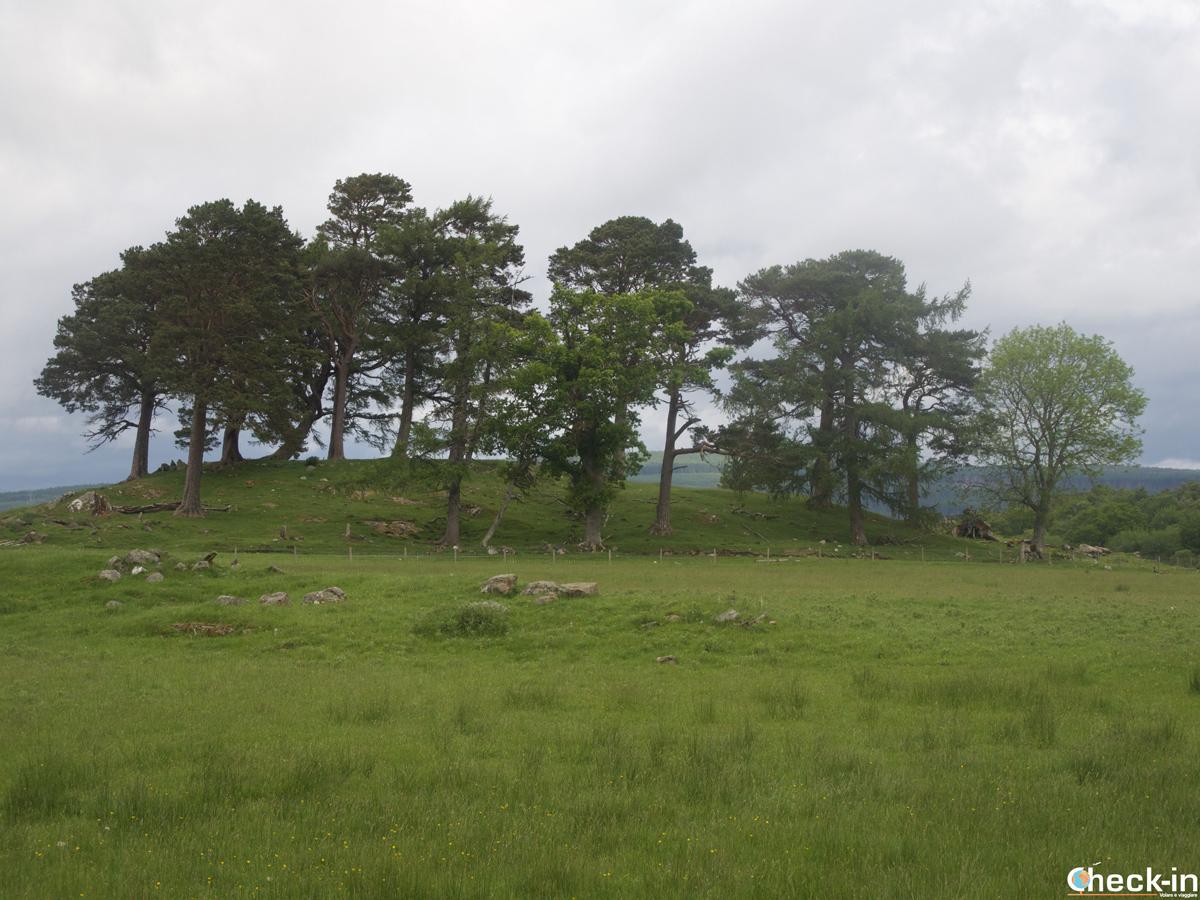 La collina di Craigh Na Dun di Outlander a Kinloch Rannoch, Scozia