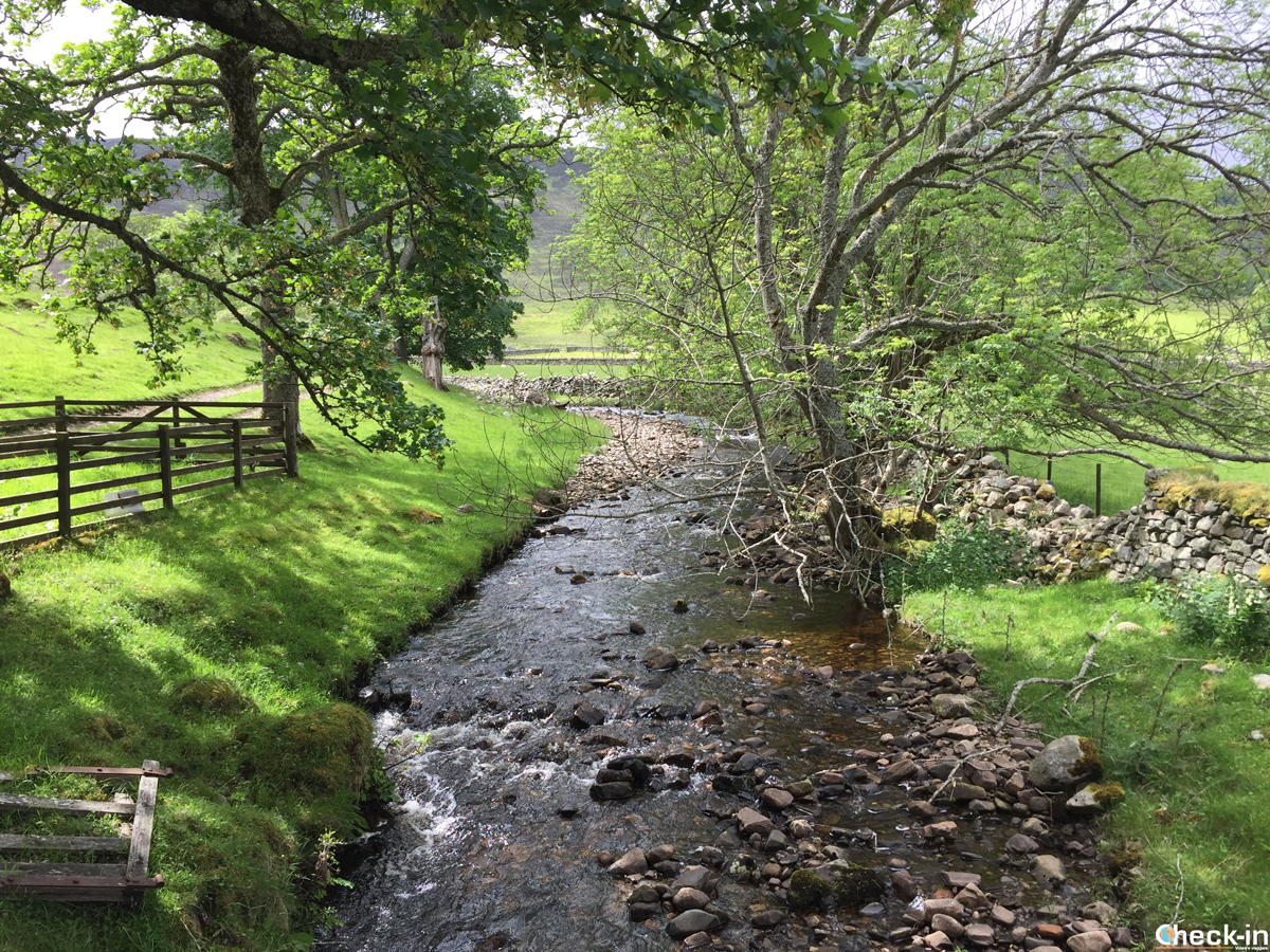Scorci di Dunalastair Estate a Kinloch Rannoch, Scozia