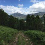 """Kinloch Rannoch, escursione giornaliera da Pitlochry tra natura, loch, belvedere e location della serie tv """"Outlander"""""""