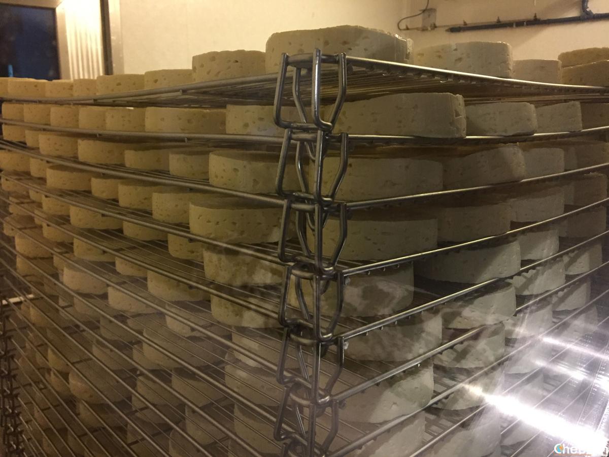 Le formaggette Wilder Käser, tipiche del Tirolo austriaco