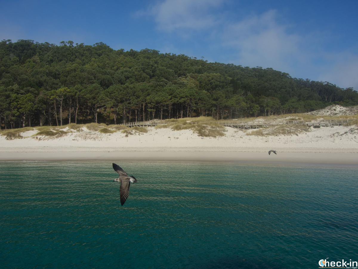 Approdo con Mar de Ons alle Islas Cíes a Vigo - Galizia, Spagna