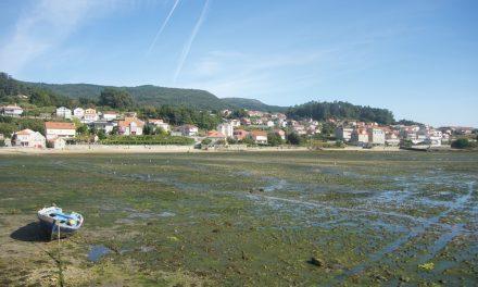 Pontevedra e Rías Baixas, cosa vedere con un tour giornaliero da Santiago di Compostela