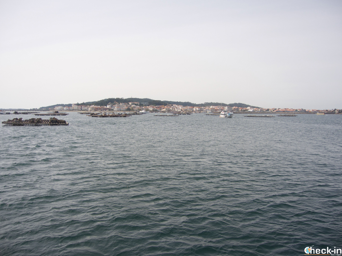 Vistazo de O Grove llegando en barco en su puerto - Rías Baixas, Galicia (España)