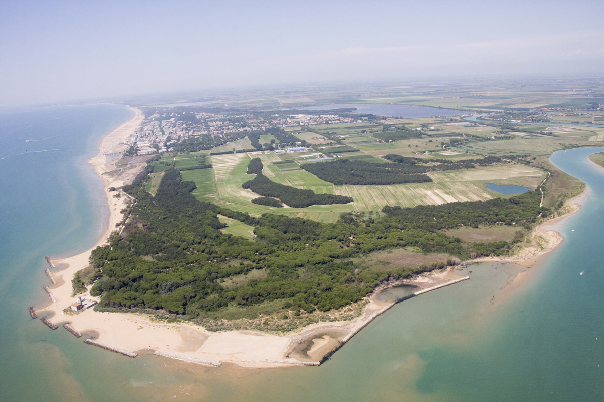 vista aerea di Bibione, della spiaggia e della pineta - Vacanza al mare in Veneto