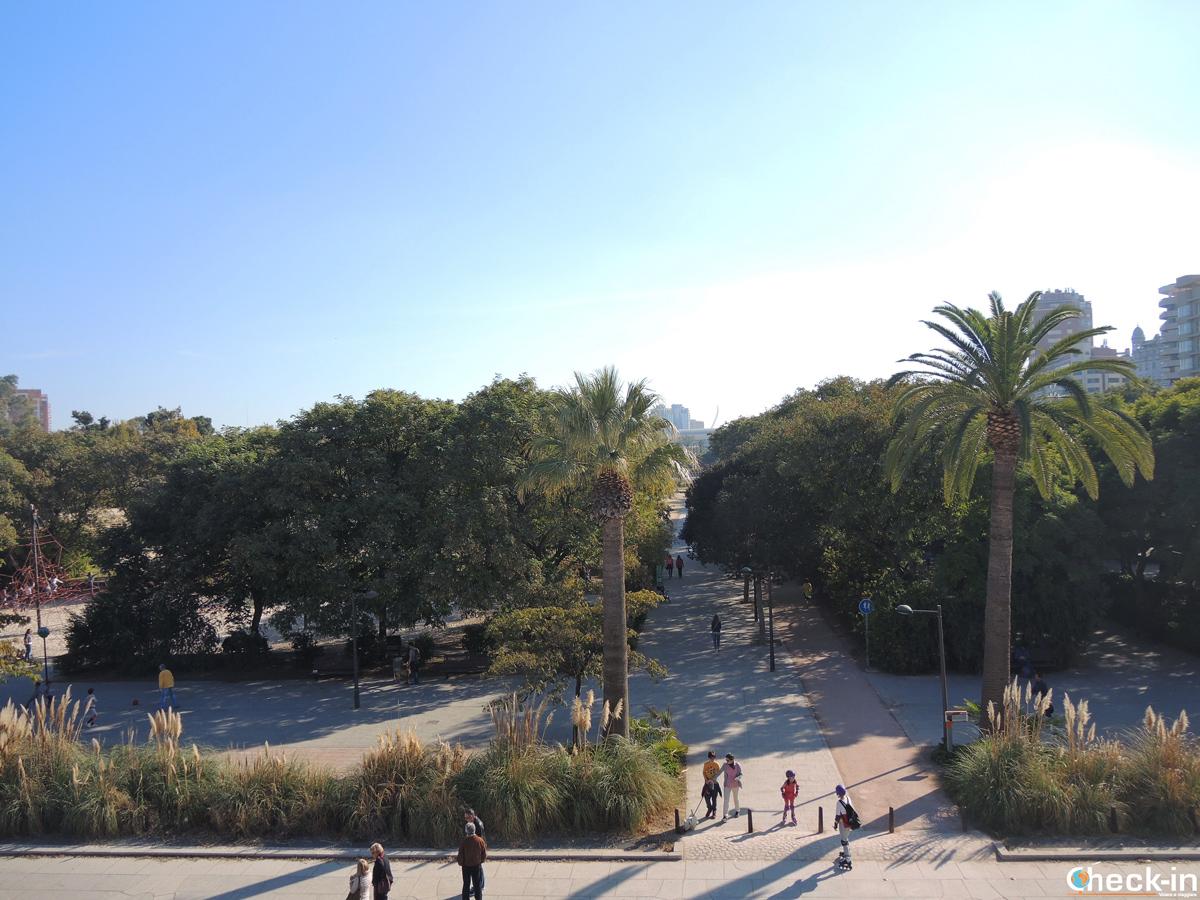 Vista dei giardini del Turia con la Città delle Arti e delle Scienze all'orizzonte