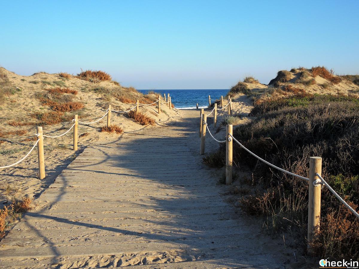 Le dune e le spiagge a El Saler - Parco dell'Albufera di Valencia (Spagna)