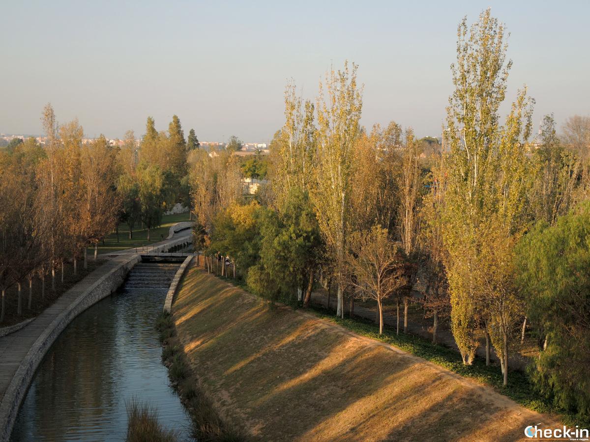 Il Parco de Cabecera di Valencia (Spagna)