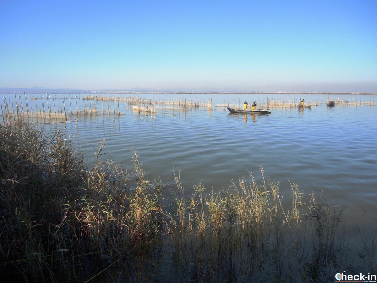 Pescatori nella Gola del Pujol nel Parco Naturale della Albufera a Valencia (Spagna)