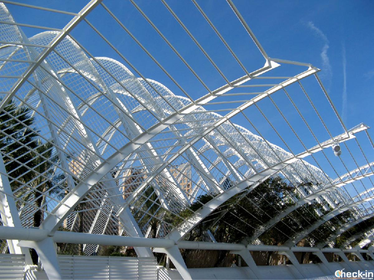 Cosa vedere nella Città delle Arti e delle Scienze di Valencia: l'Umbracle.