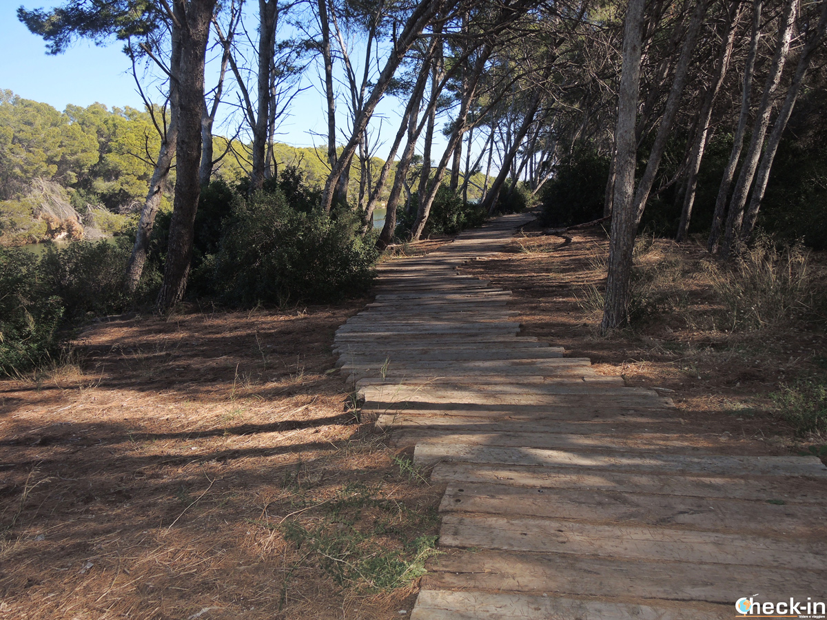 Ruta de senderismo en el Parque de la Albufera de Valencia
