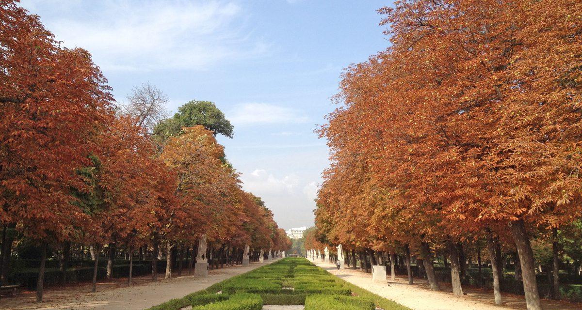 Madrid, i migliori parchi e giardini pubblici da visitare nel cuore della capitale spagnola