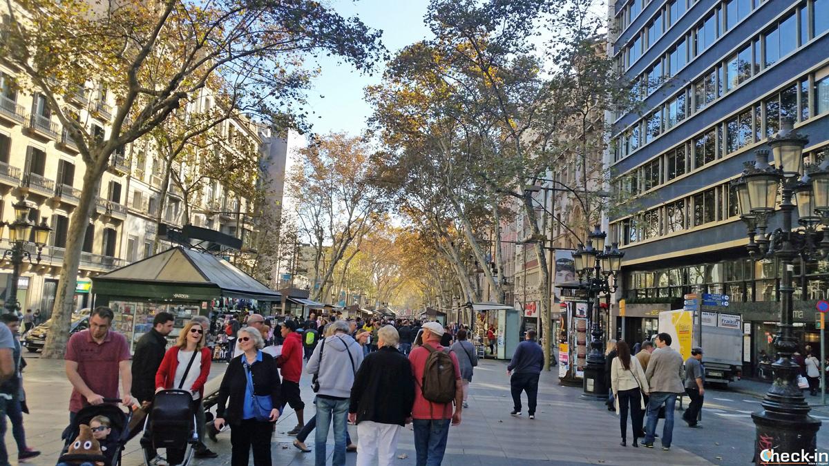 5 cose da fare a Barcellona: passeggiare lungo la Rambla