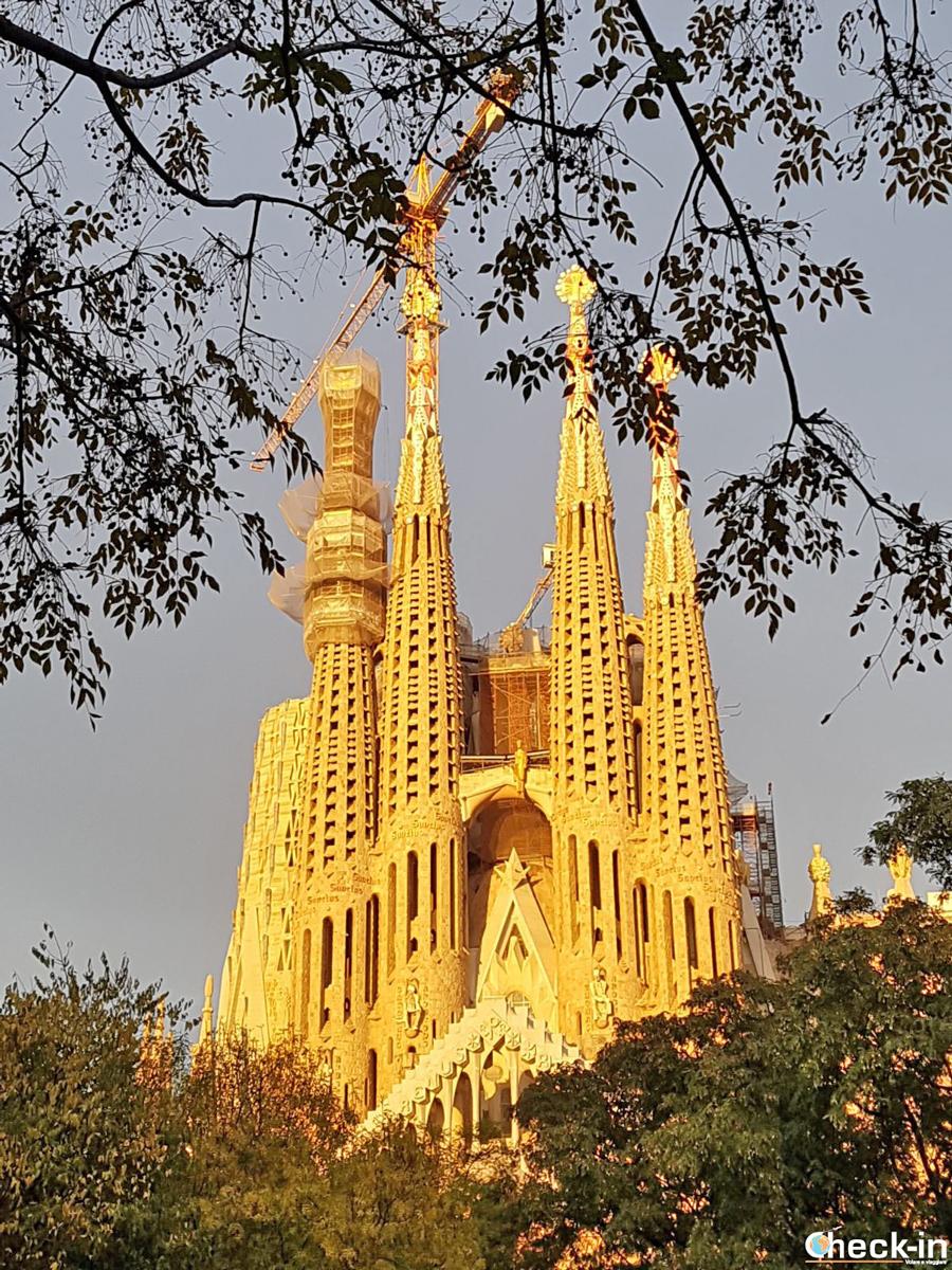 Barcellona le 5 cose da fare e da vedere assolutamente in for Cosa visitare a barcellona