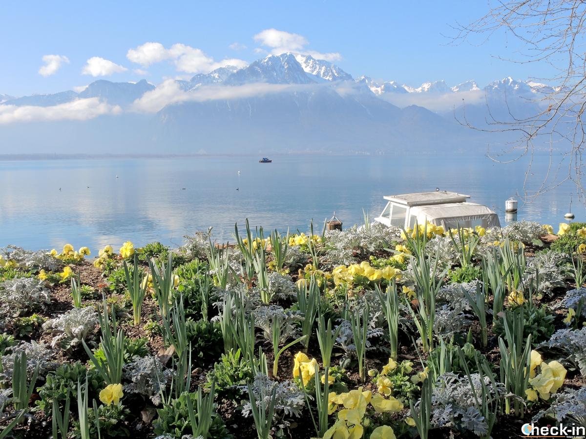 Cosa fare a Montreux: camminare sul lungolago di Ginevra