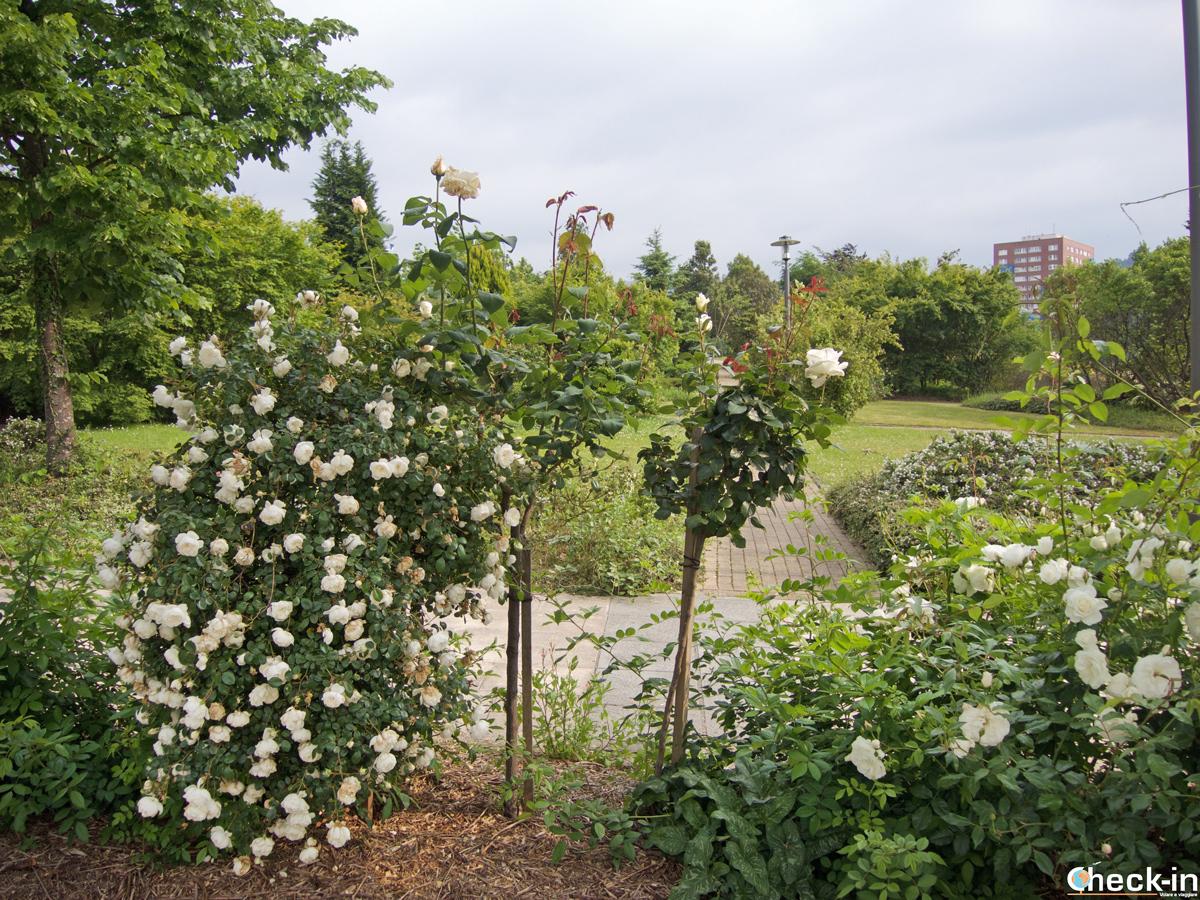 Il giardino botanico di Baracaldo, alle porte di Bilbao (Spagna)