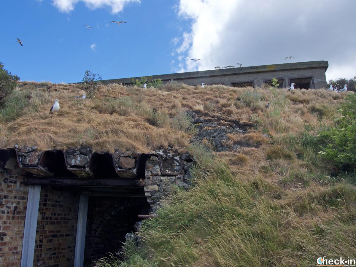 I resti dei bunker del secondo conflitto mondiale sull'isola di Inchcolm (Edimburgo, Scozia)