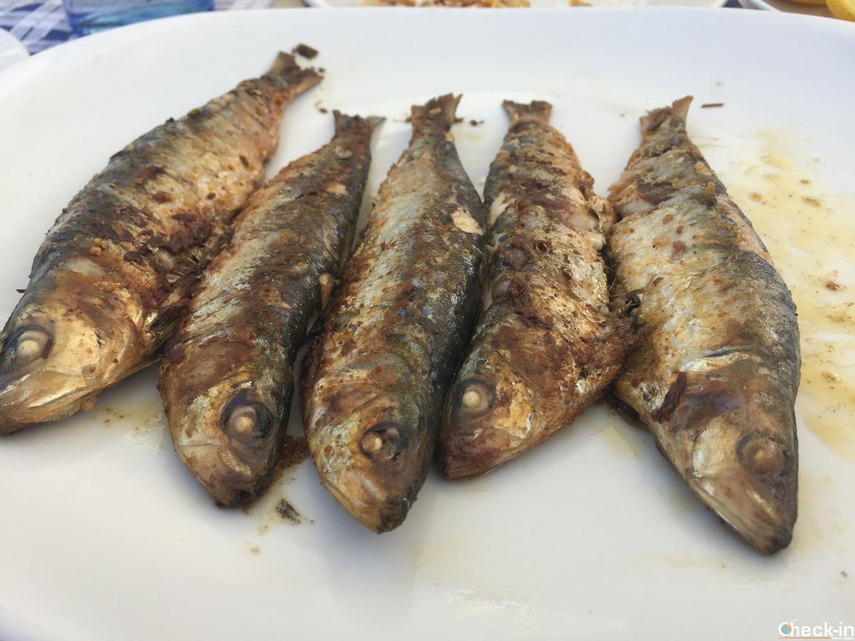 Sardine fresche al porticciolo di Cudillero - Asturie, Spagna