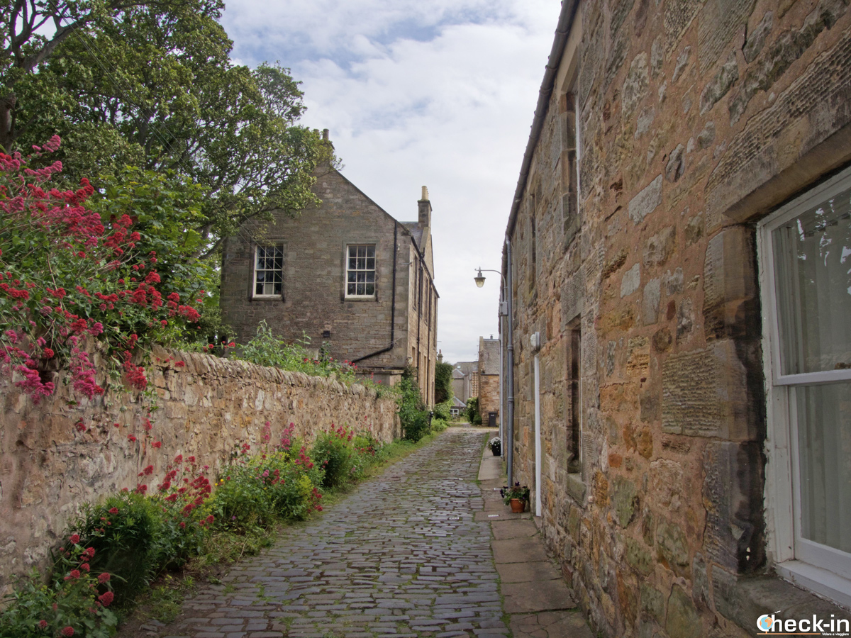 Wandering across St Andrews' town centre