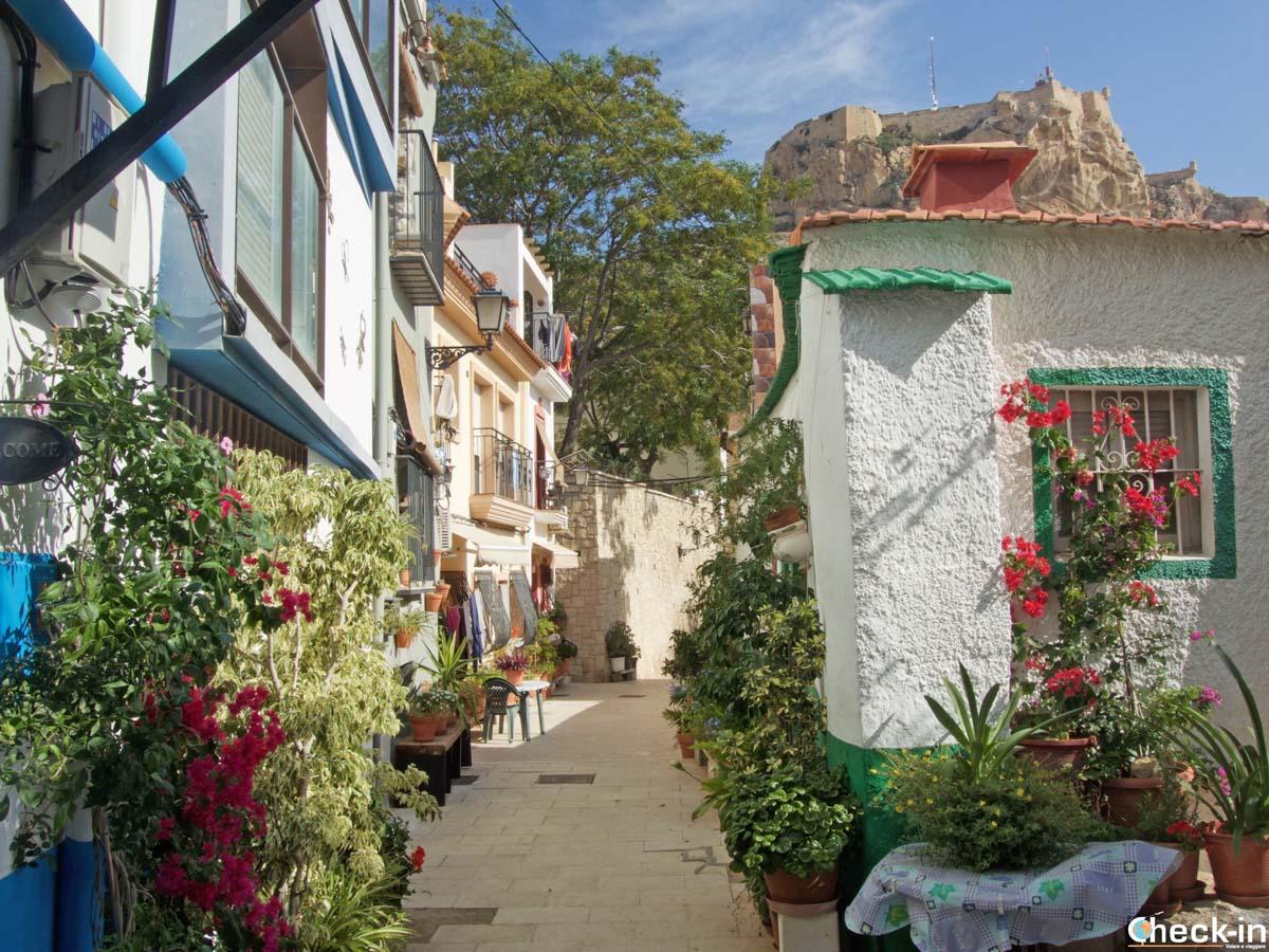 Calle con encanto en Alicante en el barrio de Santa Cruz