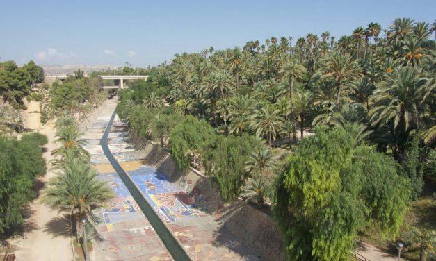 Elche (provincia di Alicante), cosa vedere nella città con il palmeto più grande d'Europa
