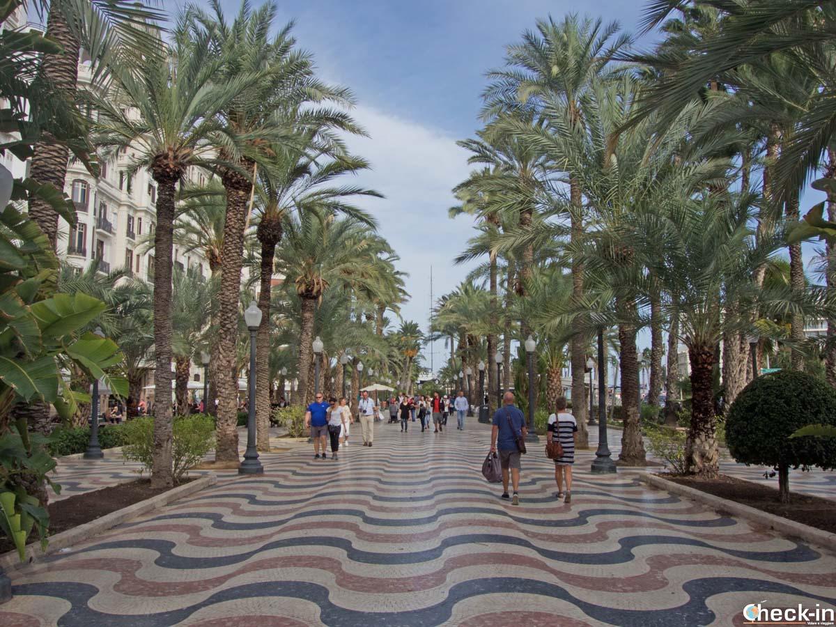 Qué hacer en Alicante: pasear por la Explanada de España