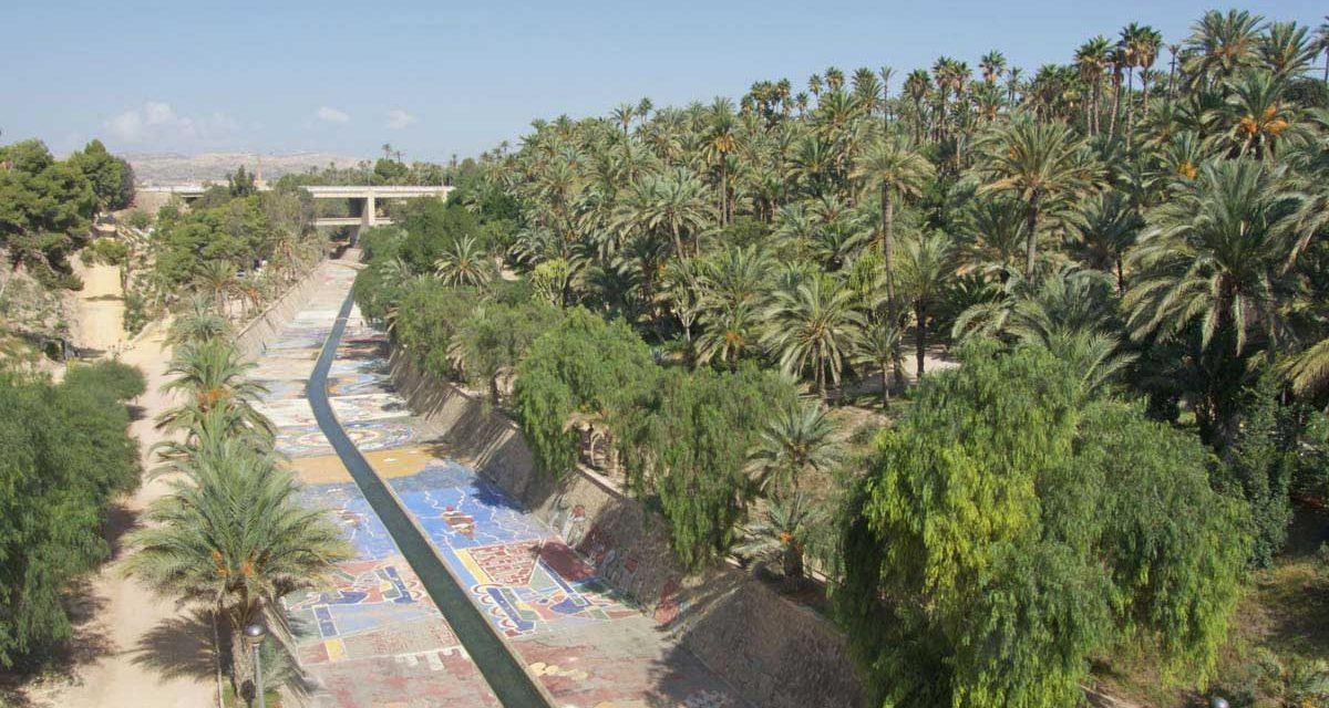 Elche (provincia de Alicante), qué ver en la ciudad española con el Palmeral más grande de Europa
