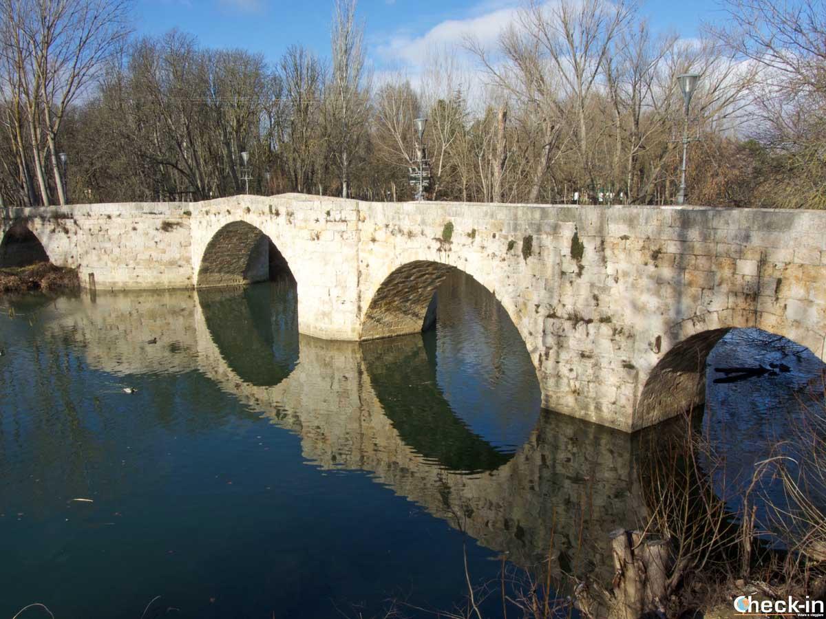 Escursione a Palencia (Spagna)   Check-in Travel Blog di Stefano Bagnasco