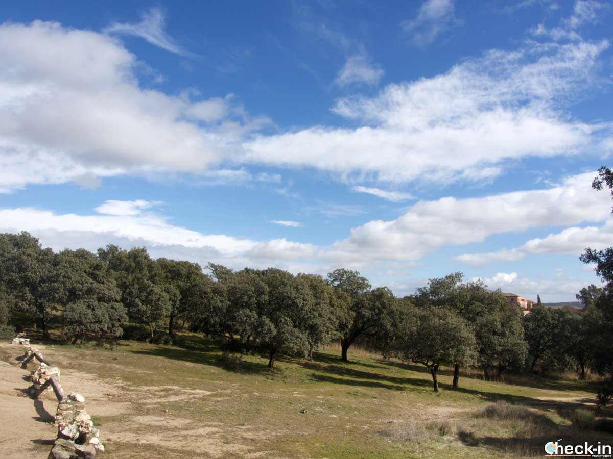 Escursionismo sul Monte El Pardo vicino al centro di Madrid