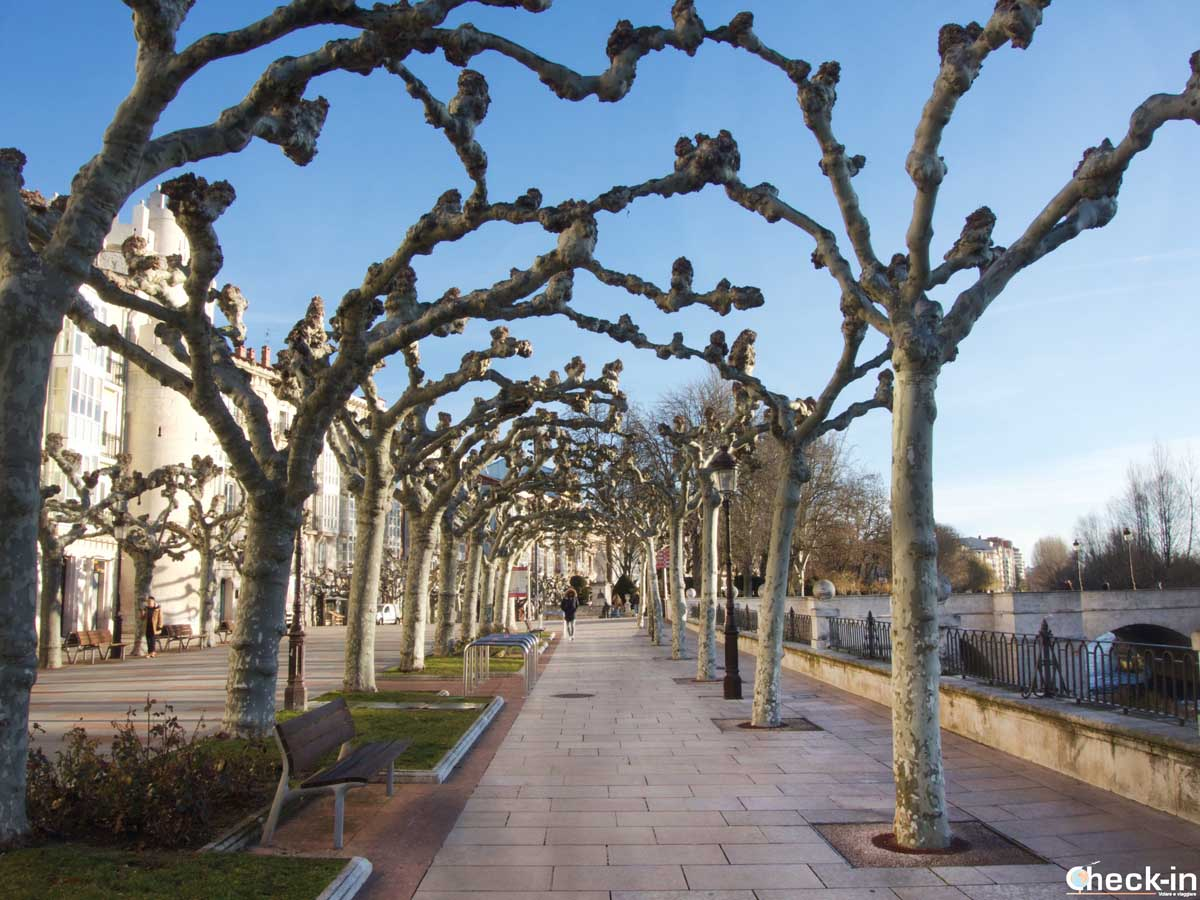 Passeggiata lungo il Paseo del Espolón di Burgos