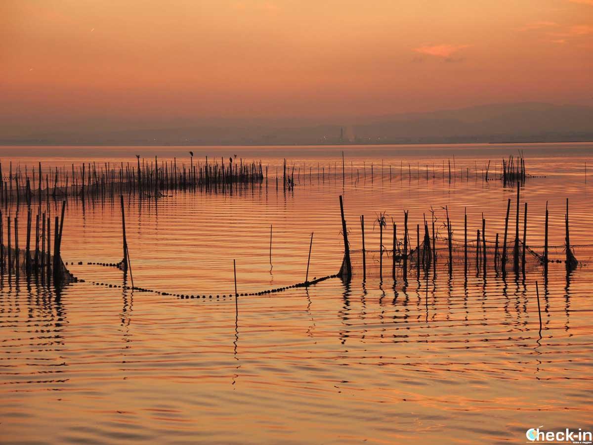 Cosa fare a Valencia: ammirare il tramonto sul lago dell'Albufera