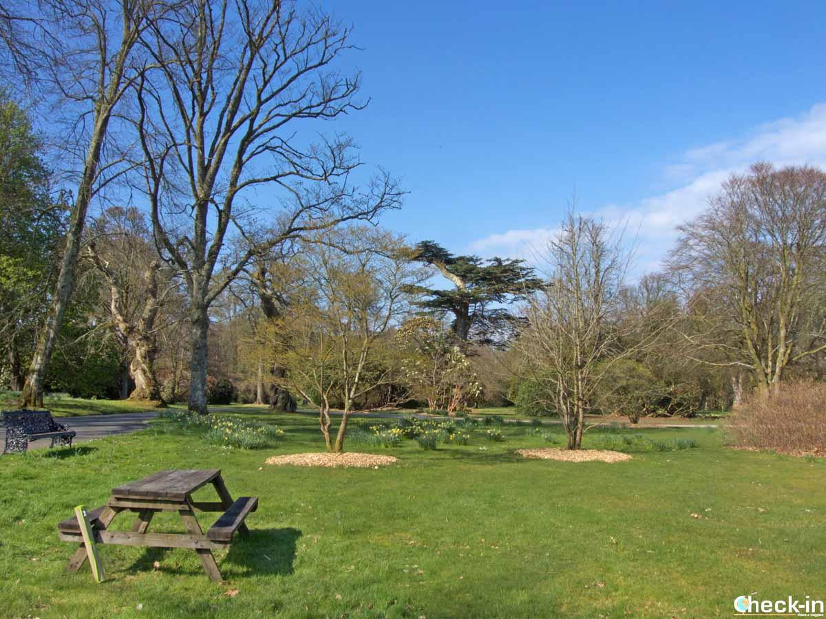 I giardini attorno a Mount Stuart (Bute) | Check-in Blog