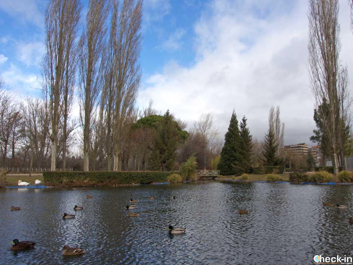 Donde relajarse en Palencia: Parque de la Isla