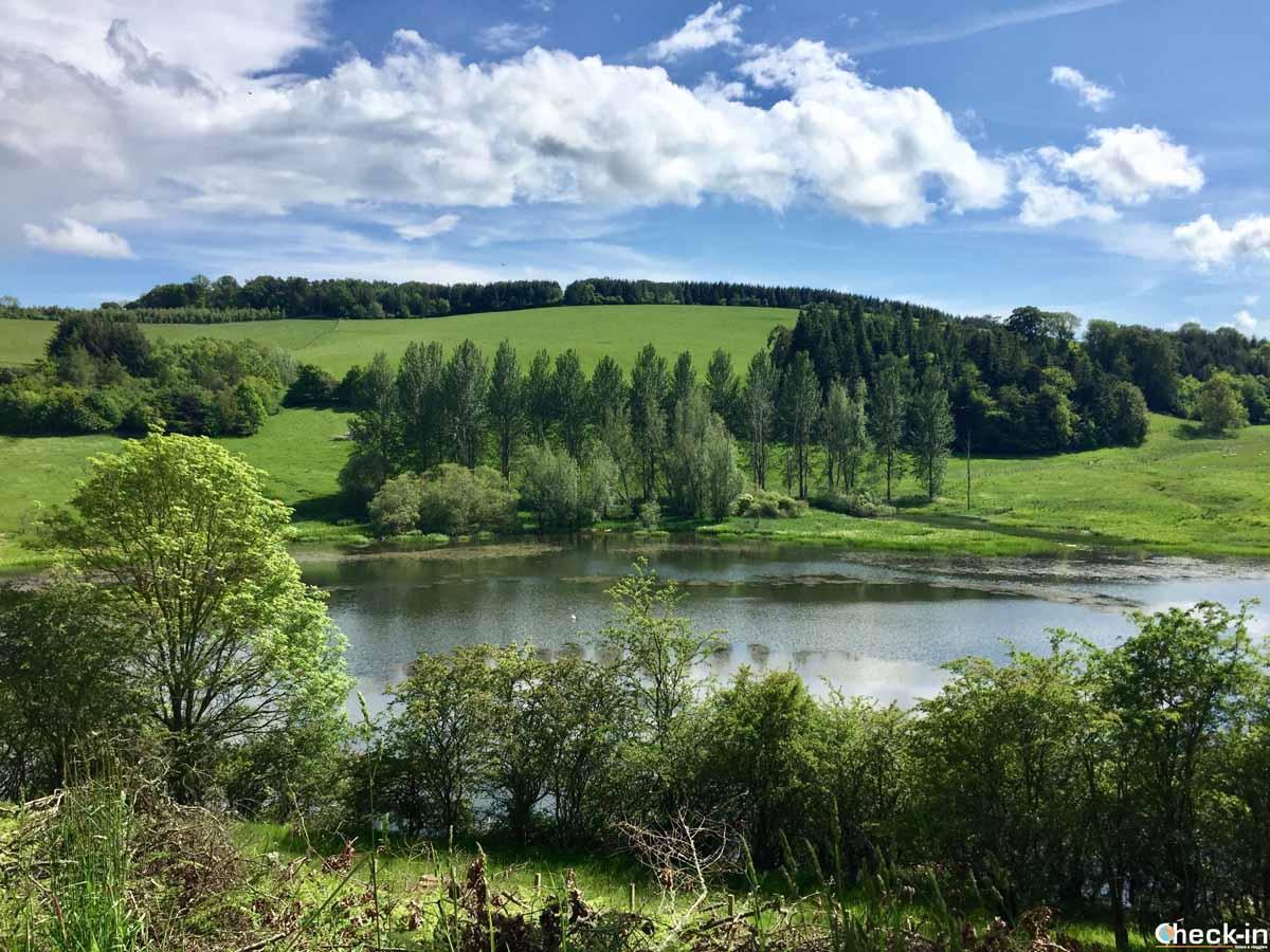 Passeggiata nei dintorni di Tweedbank - Scottish Borders, Scozia