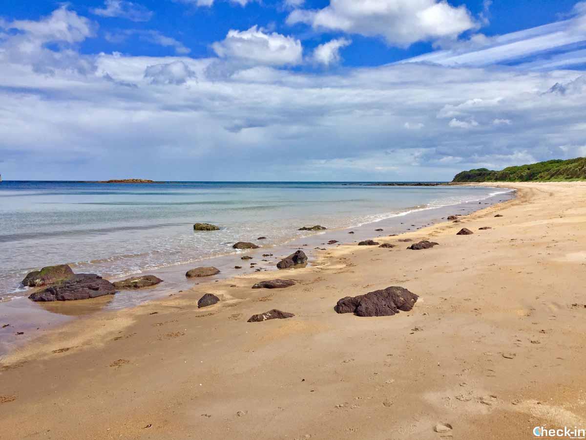 Cosa vedere a North Berwick in un giorno: la Seacliff Beach