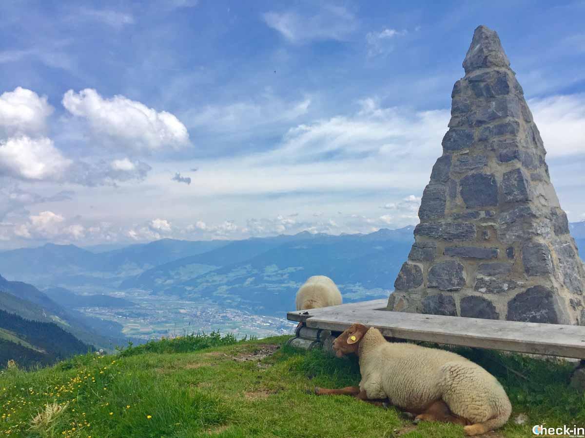 Rete di sentieri sulla Nordkette a Innsbruck